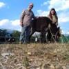 """""""Valle Siciliana Village to Village"""": viaggio nella Valle Siciliana con due asinelli"""