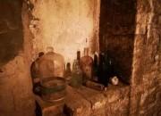 """Roseto: """"Dalle Antiche Cantine del Borsacchio alla scoperta di vino ed erbe spontanee"""""""