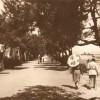 Roseto degli Abruzzi, il calendario 2019 dedicato alle strade del territorio