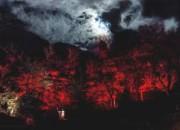 Fano Adriano: il 26 dicembre il 52° Presepe vivente di Cerqueto