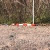 Vandali nella Riserva Borsacchio. Le Guide del Borsacchio si offrono per ripristinare i segnali divelti della pista ciclabile .